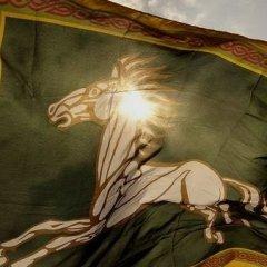 Cavaliere di Rohan