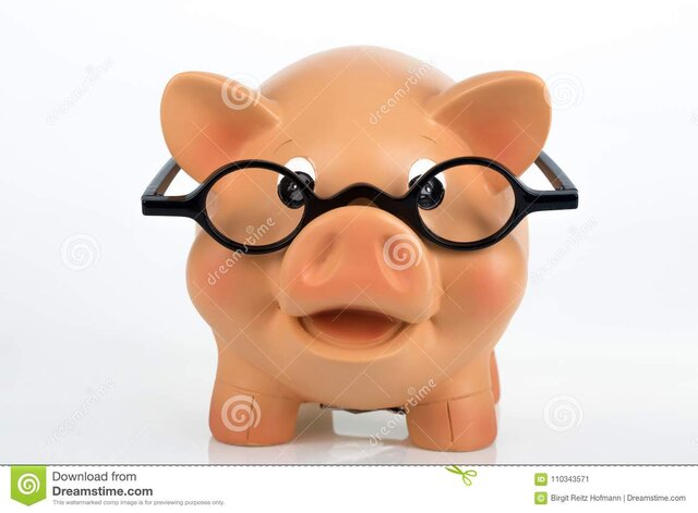 porcellino-salvadanaio-con-gli-occhiali-110343571.jpg.53781356a12b1d790ec19618e9a24a19.jpg